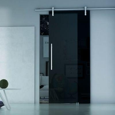 Porta da interno scorrevole Ermes Fumè 86 x H 215 cm sx: prezzi e ...