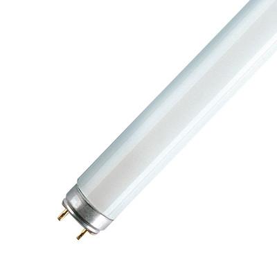 Tubo fluorescente osram fluora l t8 36w luce naturale - Tubo fluorescente 36w ...
