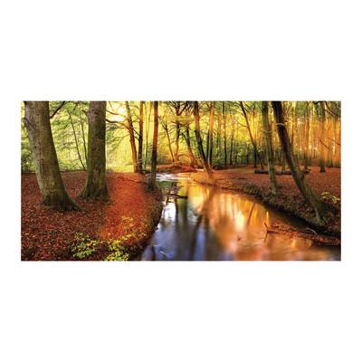 Stampa su tela fiume nel bosco 60x120 prezzi e offerte online - Canvas tuin leroy merlin ...