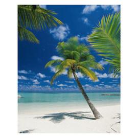 Fotomurale Ari atoll multicolor 184 x 254 cm