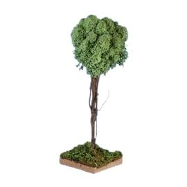 Albero con licheni 18 cm