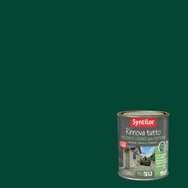 Vernice per esterno ad acqua Syntilor Rinnova Tutto verde 0,75 L