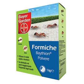 Insetticida Baythion polvere Bayer 1000 g