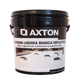 Membrana liquida riflettente bianca 5 kg