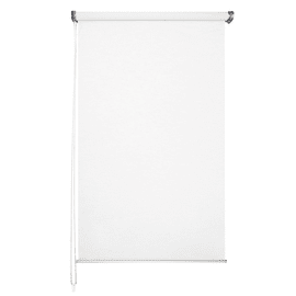 Tenda a rullo Mesh bianco 60 x 250 cm