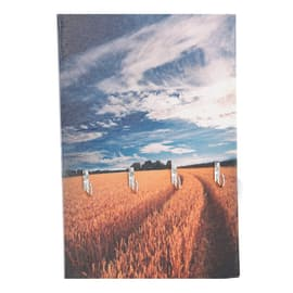 Bacheca porta chiavi 62061 4 posti Fantasia 20 x 1 cm
