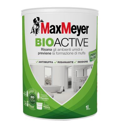 Idropittura antimuffa bianca max meyer bioactive 1 l for Antimuffa leroy merlin
