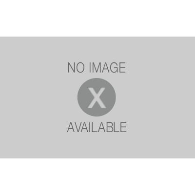 Portoncino d 39 ingresso pvc confort golden oak l 90 x h 210 for Porte esterne leroy merlin