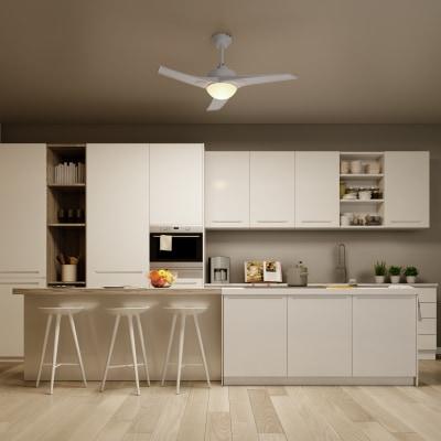 Ventilatore da soffitto con luce tokyo prezzi e offerte for Ventilatori leroy merlin