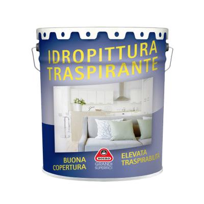 Pittura Per Interni Boero.Pittura Murale Boero 14 L Bianco Prezzo Online Leroy Merlin