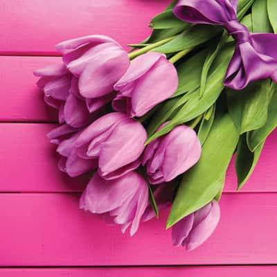 quadro su tela Tulipani rosa 80x80 prezzi e offerte online   Leroy ...