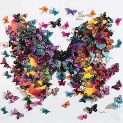 quadro su tela Farfalle 100x100