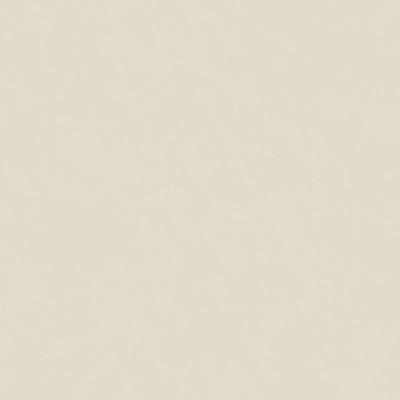 Carta da parati Spatolato cat.unit beige scuro