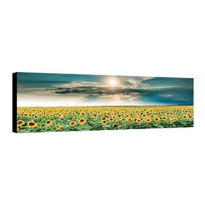Quadro su tela Canvas Girasoli 40x125 cm
