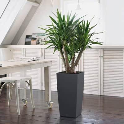 Vaso Cubico Color LECHUZA in plastica grigio H 56 , L 30 X P 30 cm  Ø 20 cm