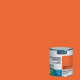 Idropittura lavabile Antimuffa Arancio Arancio 3 - 0,75 L Luxens