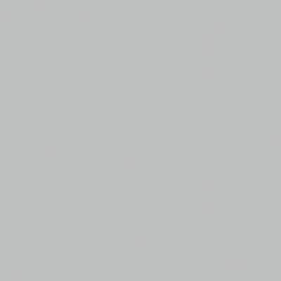 Smalto spray Elettrodomestici Rustolium Grigio Inox brillante 0,4 L