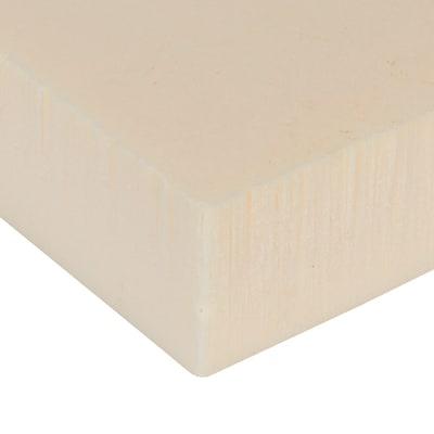 Pannello in polistirene estruso per cappotto Fortlan L 1,25 m x H 6 cm, spessore 60 cm