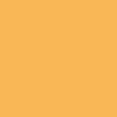 Idropittura traspirante india gold 50 ml Fleur