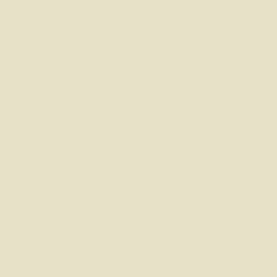 Smalto Rinnova tutto Syntilor Bianco Avorio 1 satinato 0,5 L